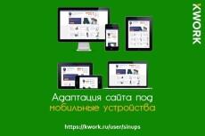 Установлю CMS Magento на хостинг 17 - kwork.ru
