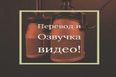 Аудио ролики 23 - kwork.ru