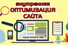Оптимизирую 1 страницу не вошедшую в ТОП. Вылет в ТОП+3 жирные ссылки 15 - kwork.ru