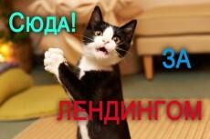 разработаю landing page 4 - kwork.ru