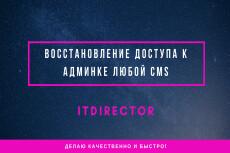Перенос домена на новый 28 - kwork.ru