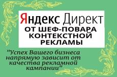 Анализ рекламной кампании и снижение расходов до 50% в Яндексе. Директ 15 - kwork.ru
