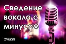 Сделаю джингл/войсдроп/интро для Dj 6 - kwork.ru