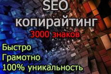 Выполню копирайт до 3000 знаков в соответствие SEO 9 - kwork.ru