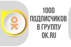 1000 подписчиков в вашу группу в одноклассниках - живые люди + Бонус 8 - kwork.ru