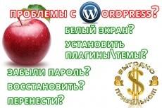 Быстрый старт для вашего проекта - Wordpress, Joomla, Opencart 8 - kwork.ru