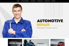 Установлю автонаполняемый блог для SEO продвижения Вашего лендинга 5 - kwork.ru