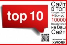 Как сделать Ваш сайт продающим - 20-минутный видеоаудит Вашего сайта 21 - kwork.ru