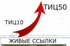 Размещение 100 вечных ссылок на трастовых сайтах с ТИЦ от 50 до 300 4 - kwork.ru