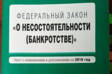 Составление заявления на банкротство физ. лица 9 - kwork.ru