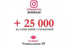10000 Просмотров видео в Инстаграм + Бонус 18 - kwork.ru