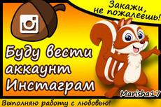 Добавлю 1000 подписчиков в Instagram 36 - kwork.ru