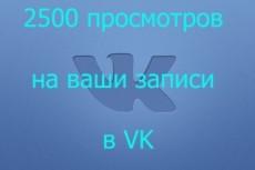 Продвину 2000 просмотров к вашей записи Вконтакте 18 - kwork.ru