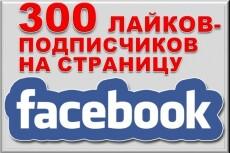 300 подписчиков на Fanpage, бизнес страницу, лайки на паблик Фейсбук 5 - kwork.ru