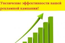 Качественно настрою Яндекс Директ под ключ. Поиск и РСЯ 37 - kwork.ru