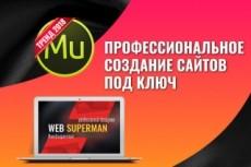 Создам сайт  на WIX.com 41 - kwork.ru