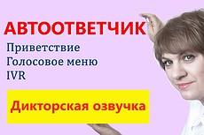 Запишу IVR или голосовое меню стильно и привлекательно 5 - kwork.ru