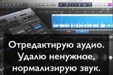 Быстро переведу Вам любые аудио и видео файлы в текст 35 - kwork.ru
