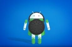 Разработка мобильного приложения 4 - kwork.ru