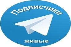 Готовый Landing Page под ключ 4 - kwork.ru