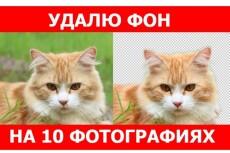 Сделаю 4 оцветнения, реставрации 4 - kwork.ru