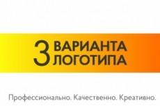 Разработаю качественный логотип 27 - kwork.ru
