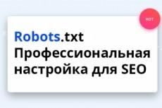 Сделаю грамотный robots.txt для SEO 4 - kwork.ru