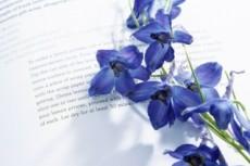 Напишу очерк, рассказ, сказку, стихотворение, эссе, повесть 19 - kwork.ru