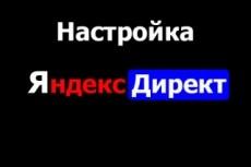 Настройка Яндекс Директ + бонус настройка метрики 20 - kwork.ru