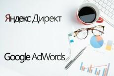 Настройка контекстной рекламы Яндекс.Директ  [50 объявлений] + Бидер + Ведение 16 - kwork.ru