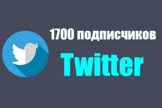 1700 подписчиков на Ваш аккаунт в Twitter 13 - kwork.ru