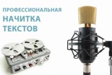Сценарий аудио ролика 26 - kwork.ru