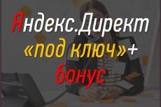 Настрою Яндекс. Директ + метрика и цели в подарок 5 - kwork.ru