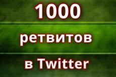 Сопровождение страницы ретвитами 5 - kwork.ru