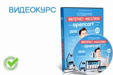 CMS Opencart. Консультация магазина 16 - kwork.ru
