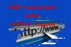 8000 тысяч просмотров для вашего сайта + 2000 тысячи в подарок 8 - kwork.ru