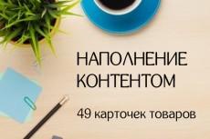 заполняю карточки товаров 14 - kwork.ru