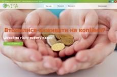 Создам сайт или блог на Wordpress под ключ 12 - kwork.ru