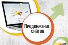 Организую трафик на сайт, интернет-магазин, профиль (группу соц.сети) 5 - kwork.ru