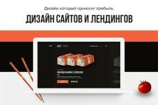 Убойный дизайн лендинга + продающий текст 13 - kwork.ru