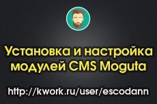 Установка модуля экспорта и импорта данных на сайт на Опенкарт 16 - kwork.ru