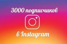 +1000 Подписчиков в ваш аккаунт instagram, отличное качество 22 - kwork.ru