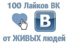 приведу 100 живых подписчиков в Вашу группу вконтакте 4 - kwork.ru