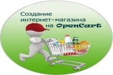Создам интернет-магазин на Opencart под вашу тематику 23 - kwork.ru