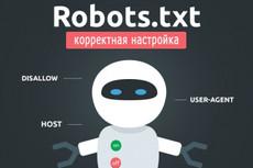 Правильная настройка robots.txt  для Wordpress 3 - kwork.ru