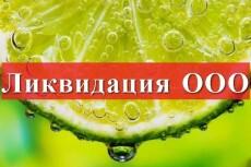 Пакет документов для смены Генерального директора 7 - kwork.ru