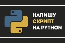 Написание, доработка и оптимизация Python скрипта 5 - kwork.ru