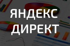 Настрою рекламную кампанию на Яндекс.Директ 22 - kwork.ru