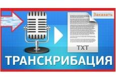 Перевод видео в текст, аудио в текст. Транскрибация 22 - kwork.ru