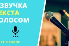 Озвучивание текста мужским голосом 3 - kwork.ru